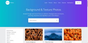 Canva collection of Free Stock Photos